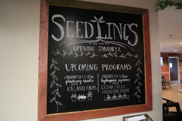 seedlings-5